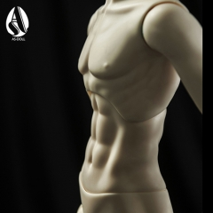 65cm muscle male body